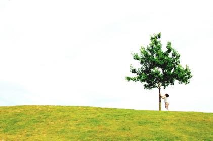 white-sky-tree.jpg