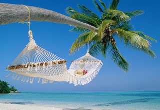 travel-business-hammock-beach.jpg