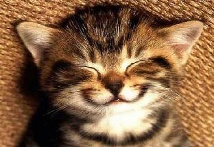 패턴영어,영어패턴,smile.jpg