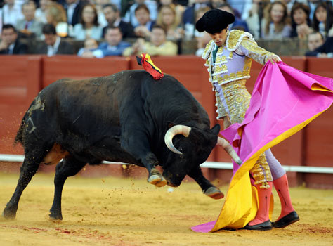the-bullfighting.jpg